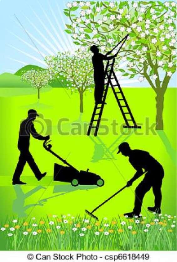 Felix landscaping service